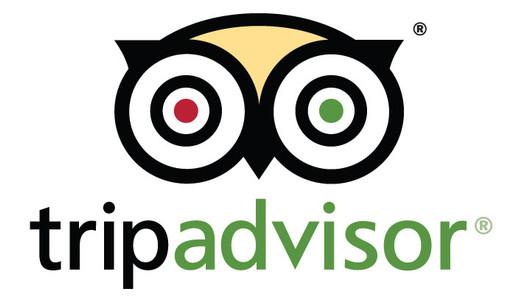 Avis clients : TripAdvisor, un ami qui vous veut du bien ? tripadvisor logo 520x300x24 fill
