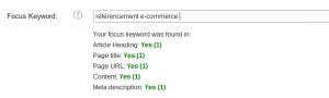 Référencement de blog : bien optimiser ses articles  FocusKeyword 300x90