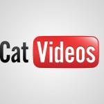 insérer une vidéo dans wordpress