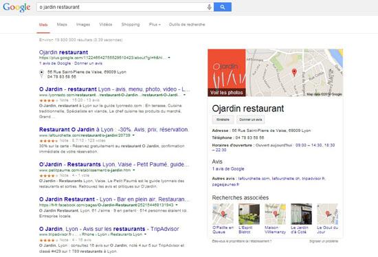 La bible du positionnement Google : outils, erreurs et analyse O Jardin Google Local1