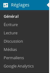 Configurez Google Analytics et Wordpress pour tout savoir de votre audience Screenshot 2014 04 03 at 10.19.18