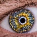 iRobot Eye v2.o