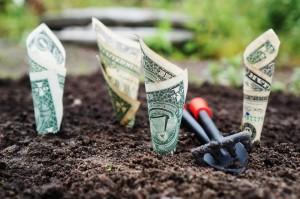 6 détails à corriger pour avoir plus de clients avec votre portfolio portfolio 300x199