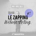 neocamino_zapping_webmarketing_5