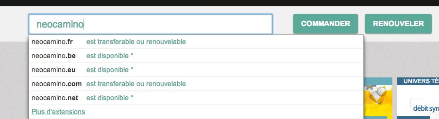 vérifier la disponibilité d'un nom de domaine