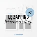 neocamino_zapping_webmarketing_7