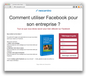 Landing page : définition, exemples et astuces  Screen Shot 2014 12 17 at 4.22.43 PM 300x265