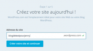 Comment faire son blog pour conquérir un maximum de prospects ! wordpress 21 300x164