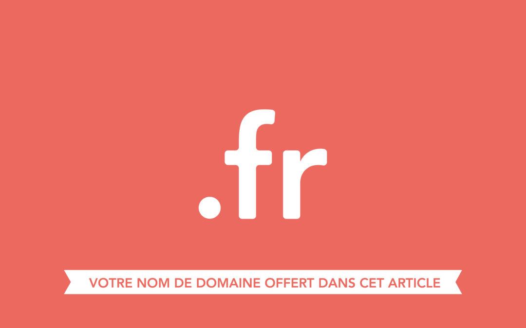 Pourquoi et comment enregistrer un nom de domaine en .fr ?